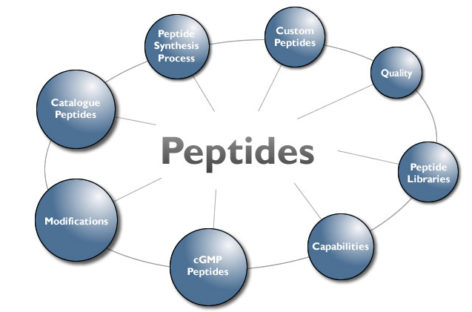 Growth Hormone Peptides Explored