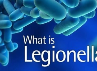 Tips on Keeping Your Property Risk Free from Legionella Bacteria