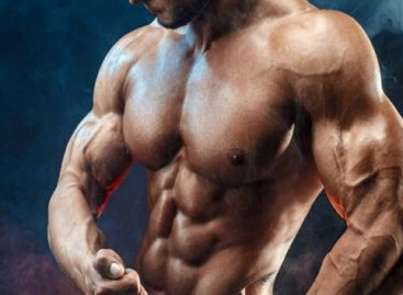 Are Steroids Good or Bad For the Muscular Development?