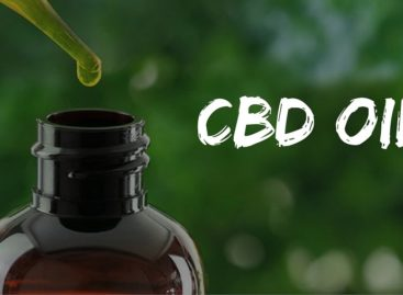 Improve your health with usage of CBD oil
