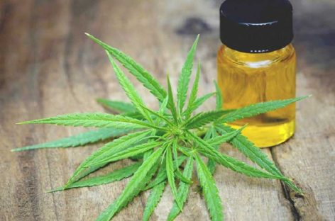 How Is CBD Hemp Oil Helpful for Cancer Patients?