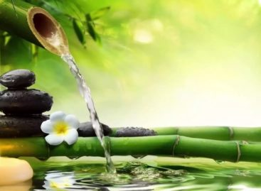 Kеrаlа Ayurveda – Frоm Holistic Treatments To Health Tourism In Kerala