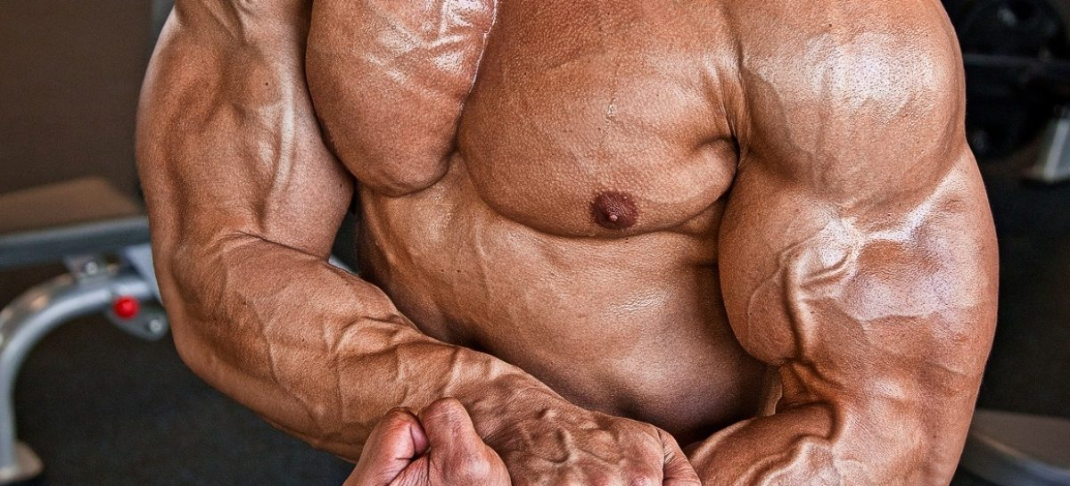Improve Your Muscles By Getting The Products Of Crazybulk