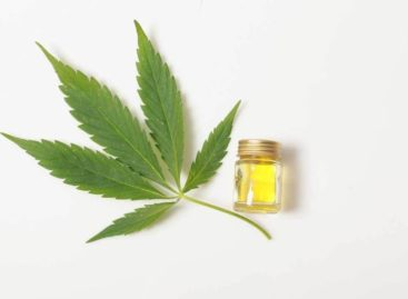 What Benefits CBD Oil Have on Human Health?